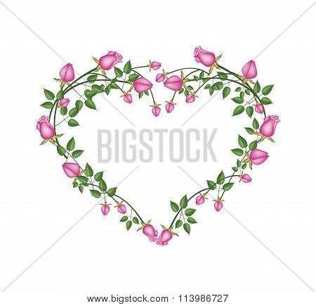 Beautiful Pink Roses Flowers in Heart Shape