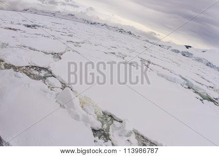 Pack Ice On Antarctic Peninsula