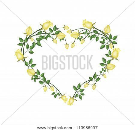 Beautiful Yellow Roses Flowers in Heart Shape