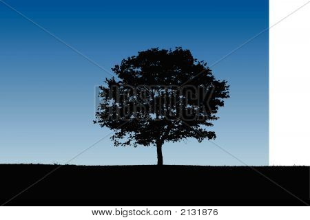 Detailed Tree Silhouette