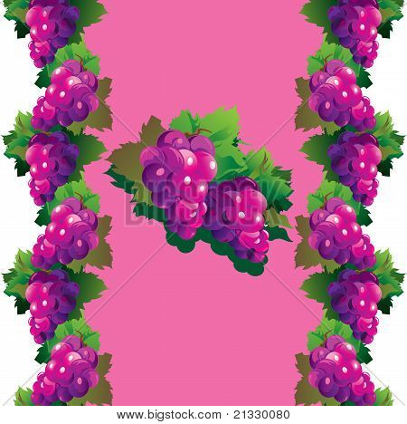 Fruit_grapes_11_01.eps