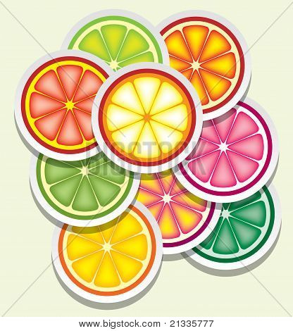 Vector Citrus Slices