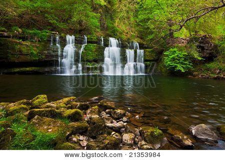 Lush Spring Waterfall