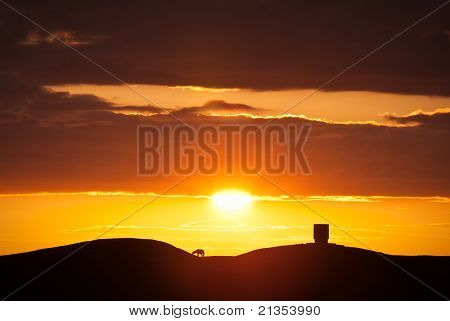 Silhouetted Lamb On A Hilltop At Sunset