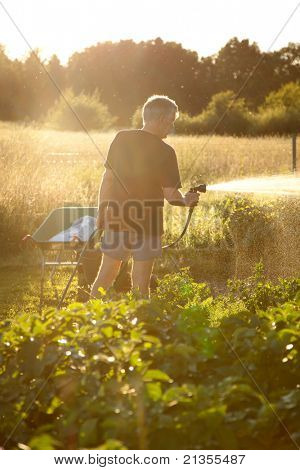 Man spraying water on vegetables with a garden hose.