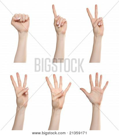 Hand Gesture Set Counting Numbers