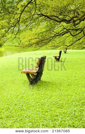 empty chairs beside lake garden