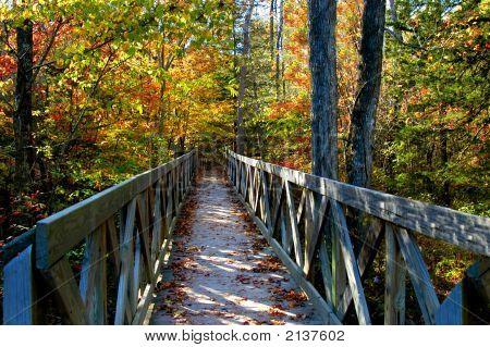 Beckoning Bridge