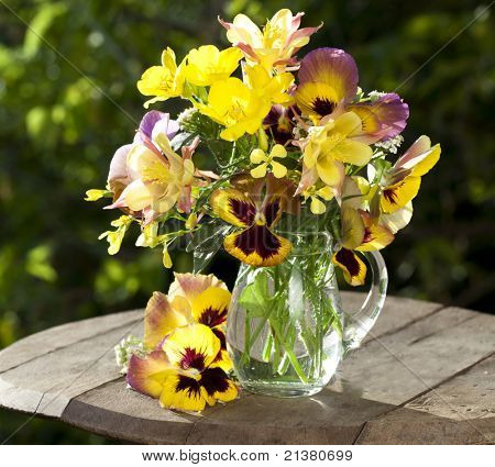 bouquet of spring flowers pansies in a jar of glass and aquilegia pink