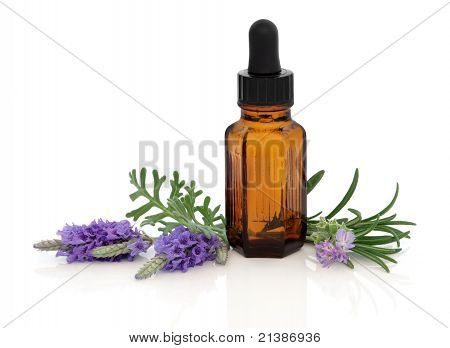 Lavender and Rosemary Essence