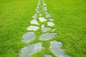 stock photo of stepping stones  - Garden stone path with grass growing up between the stones - JPG