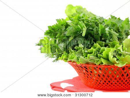 fresh green grass parsley dill onion herbs mix in a wicker basket