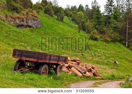 Carrinho, madeira e cabra