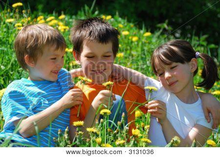 Children In Flower Meadow