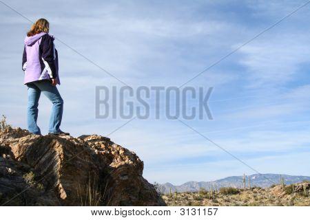 Enjoying The Desert Panorama