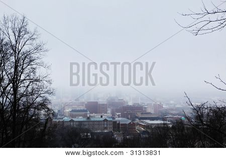 Foggy City Scene