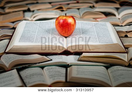 Red Fruit On Big Book