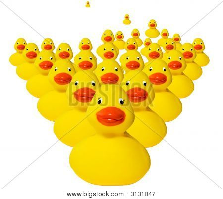 Horde Of Rubber Duckies