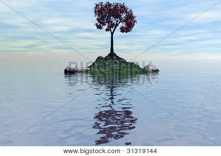 Island With A Tree1