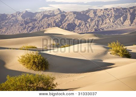 Death Valley Sandscape