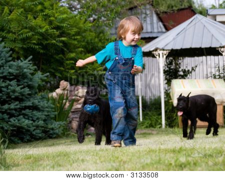 Blond Child And Couple Of Black Dogs Riesenschnauzer With Blue Ball  Playing At Green Lawn Close To
