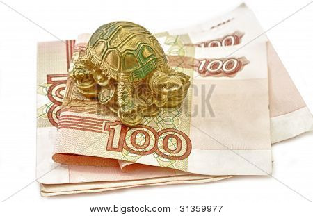 Money And Tortoise Rich Concept Feng Shui Asian
