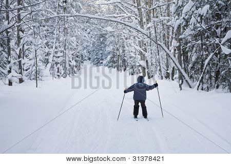 The Boy On Skis