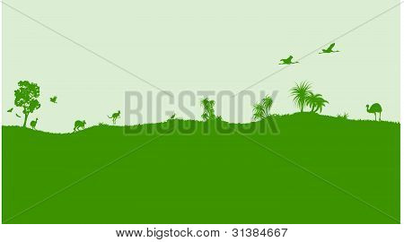 Vector decoration with Australian nature