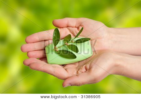 Woman Hands With Soap