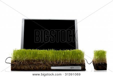 Laptop Computer and mouse made out of grass