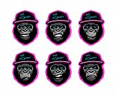Angry Gorilla Head In The Baseball Cap On A Dark Background. Vector Illustration. poster
