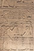 stock photo of aswan dam  - Hieroglyphs in the temple of Kalabsha near Aswan High Dam  - JPG