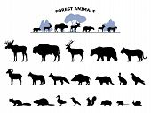 Set Of Black Silhouette Wild Forest Steppe Animals. Collection Woodland Animals. Vector Illustration poster