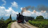 "stock photo of darjeeling  - The Darjeeling Himalayan Railway, nicknamed the ""Toy Train"", is a 2 ft  (610 mm) narrow gauge railway from New Jalpaiguri to Darjeeling in West Bengal, run by the Indian Railways.