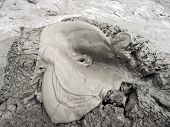 Mud Volcano Eruption. Mud Volcanoes In Berca, Romania. A Mud Volcano Or Mud Dome Is A Landform Creat poster