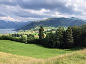 Alpine Pastures And Grasslands In The Valley Of Sihltal And By The Artifical Lake Sihlsee, Einsiedel poster
