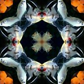 Seamless Symmetrical Pattern Abstract Fish In The Sea Texture poster