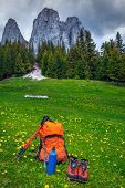 Hiking Boots, Colorful Backpack, Thermos And Hiking Pole In Flowery Meadow. Hiking And Trekking Equi poster