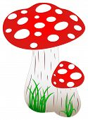 Red Amanita Fly Agaric Mushroom With Green Grass As Vector. Mushroom On A Isolated White Background. poster