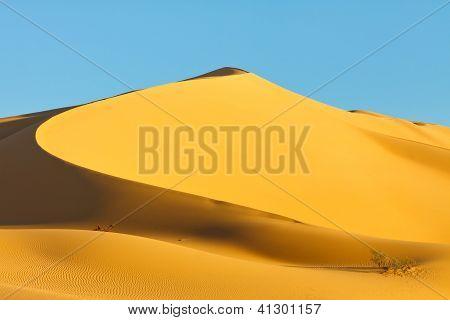 Curved Sand Dune, Sahara Desert