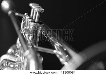 Trumpet 1 b&w