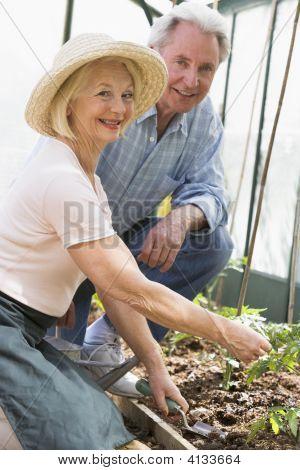 Frau im Gewächshaus, Pflanzen, Samen und Man holding Gießkanne lächelnd