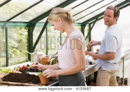 Paare im Gewächshaus setzen Boden in Töpfe lächelnd