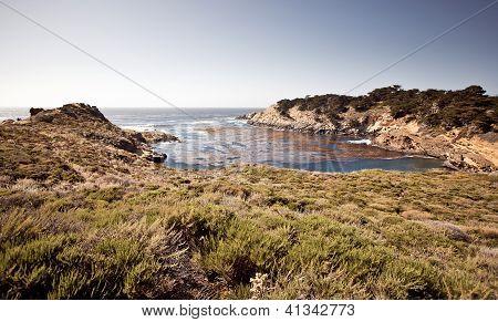 Point Lobos, Carmel, California