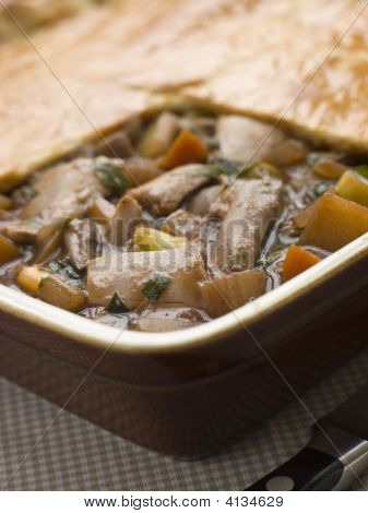 Chicken Vegetable And Gravy Pie