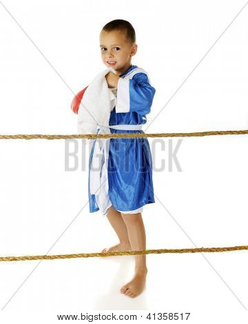 An adorable preschooler poised behind ropes with a towel, his red gloves and wearing his blue boxing robe -- ready for a fight.  On a white background.