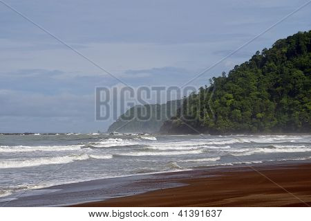 High Surf Pounding Rainforest Covered Shores