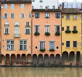 foto of underdog  - Elevations of the buildings of the arno florence - JPG
