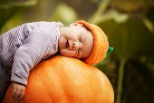 stock photo of innocence  - sweet baby with pumpkin hat sleeping on big orange pumpkin - JPG