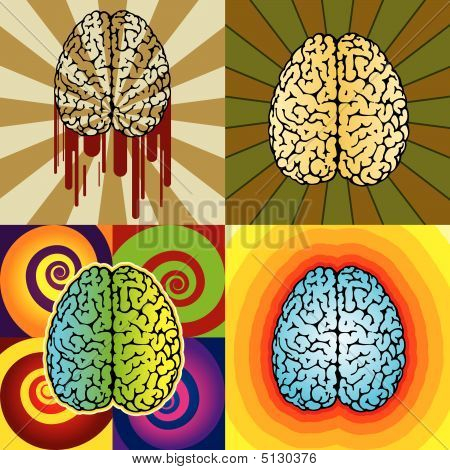 Brain Patterns.